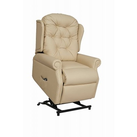 Celebrity - Woburn Petite Leather Lift  plus Rise Recliner