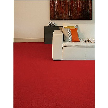 Westex Carpets - Exquisite Velvet Carpet